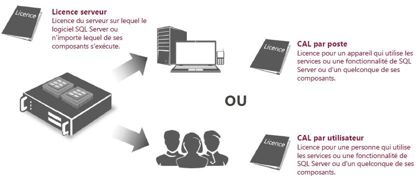 Licences d'Accès Client (CAL).